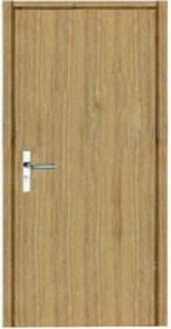 flush-door