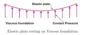 Elastic Plate